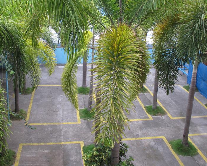 Praferosa Resort Hotel